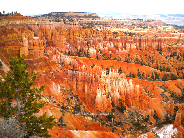 Bryce Canyon US National Park in Utah UT Hoodoo