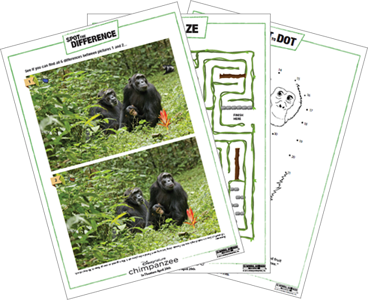 Disney's DisneyNature Chimpanzee Family Activity Book