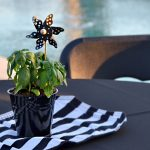 Simple Yet Fun Party Centerpiece