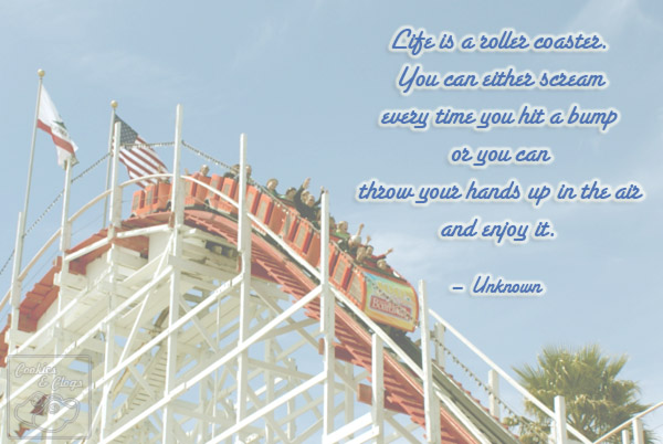 Positive Roller Coaster Quote