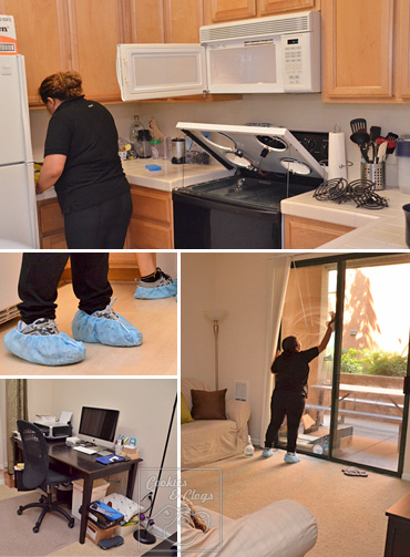 How To Clean A House exec green house cleaning service-good & affordable ca, ny, wa, ma, il