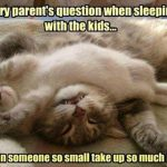 Funny Quote About Kids : How Can Someone So Small Take Up So Much Room?!