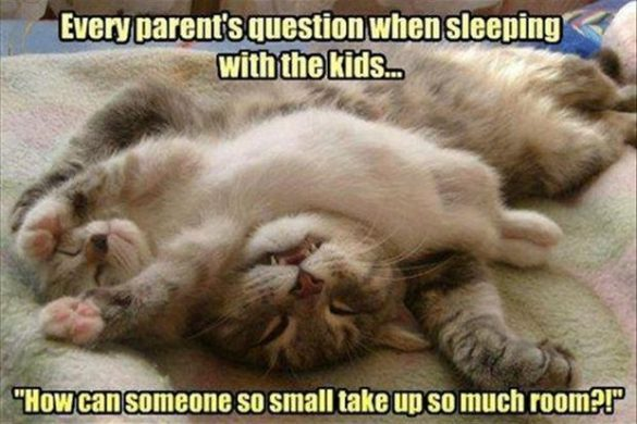 Sleeping With Kids Funny Quote