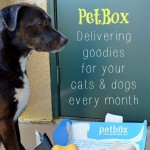 PetBox monthly pet / dog / cat delivery service #Dogs #Cats