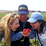 Strawberry fields tour in Watsonville w/ CA Strawberry Commision – Shinta Kawahara Farm with Rod Koda #StrawberryLand #photography