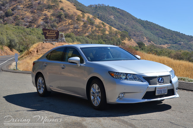 2014 lexus es 300h easy on the eyes and the fuel tank. Black Bedroom Furniture Sets. Home Design Ideas