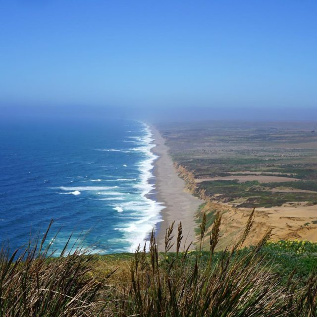 Loved our 1st visit to Point Reyes So much tohellip