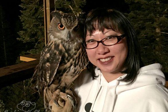 Famous Owl Photo