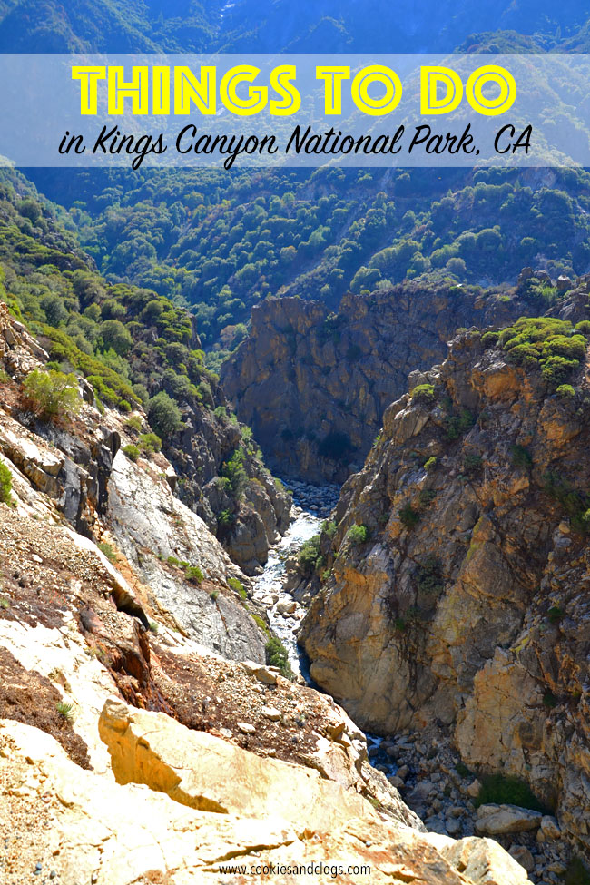Things to do in kings canyon national park ca for families for To do in california