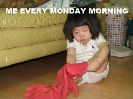 Cute Quotes | Motivational Monday | Does this cute quote / photo meme resemble you at all first thing Monday morning?