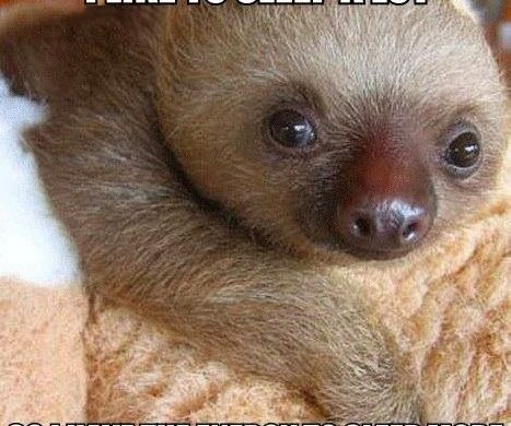 """Cute Quotes 