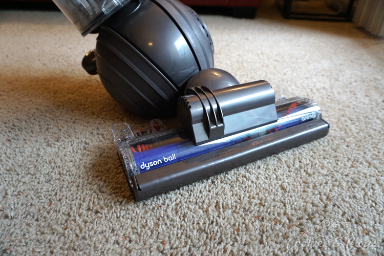 Home | Housecleaning | Technology | Electronics | The new Dyson Ball Animal upright vacuum is out but does it work well? Find out in this review featuring our family dog!