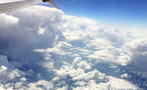 Travel | Blogging | Business | We're headed to Walt Disney World in Orlando, Florida again for the 2016 Disney Social Media Moms Celebration. Follow along with the latest announcements from #DisneySMMC 2016! Clouds from an airplane.