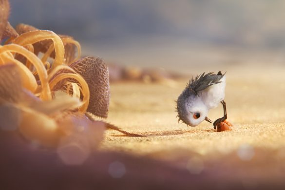 Movies | Disney Pixar will be releasing another animated treat along with Finding Dory on June 17, 2016. Enjoy these six fun facts from the Piper animated short from Director Alan Barillaro, featuring a loveable baby sandpiper bird.