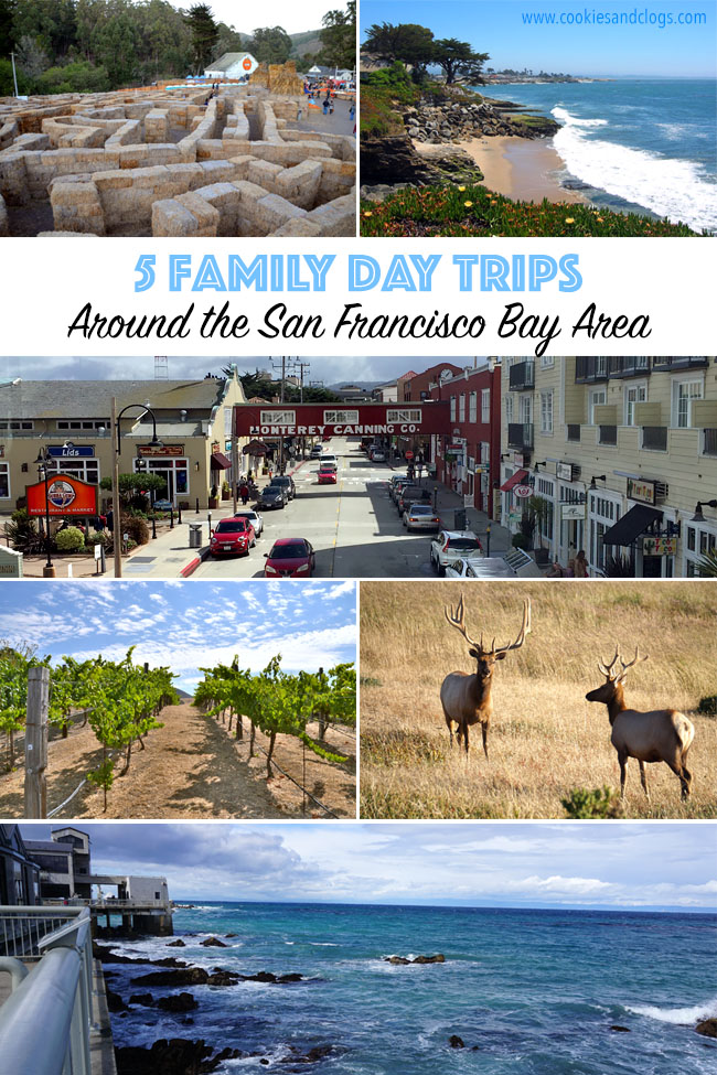 Things to do in san francisco 5 day trips around the bay area for Bay area vacation ideas