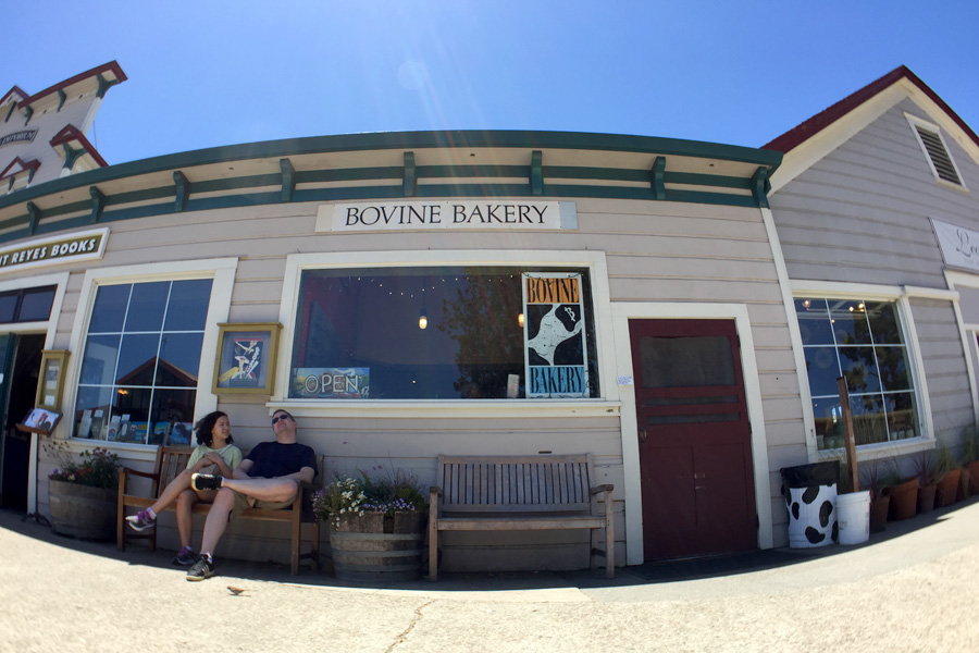 Cookies & Clogs | Want to take a family road trip to Point Reyes National Seashore in Point Reyes, CA? Here are several things to do with the kids including the Point Reyes Lighthouse. See what the climb down is like and if it's worth the trek. Bovine Bakery in Point Reyes Station + Gluten-Free
