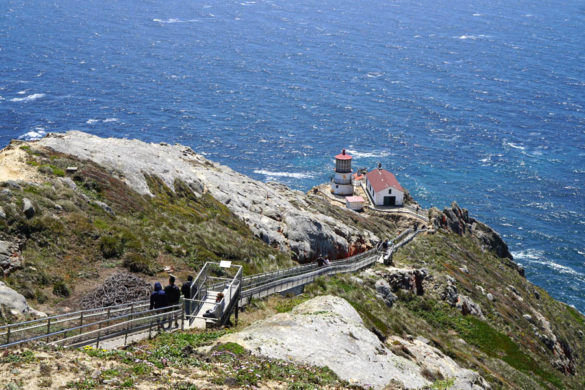 Cookies & Clogs   Want to take a family road trip to Point Reyes National Seashore in Point Reyes, CA? Here are several things to do with the kids including the Point Reyes Lighthouse. See what the climb down is like and if it's worth the trek. Overview from observation deck
