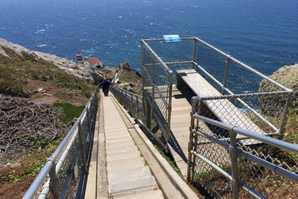 Cookies & Clogs   Want to take a family road trip to Point Reyes National Seashore in Point Reyes, CA? Here are several things to do with the kids including the Point Reyes Lighthouse. See what the climb down is like and if it's worth the trek. Resting / sitting areas