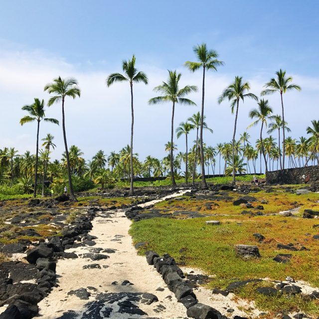 Puuhonua O Hnaunau National Historical Park aka City of Refugehellip