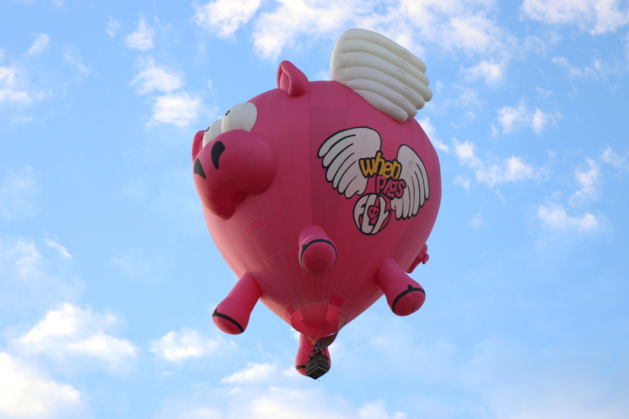 2017 Albuquerque International Balloon Fiesta in New Mexico Special Shapes Rodeo Flying Pig