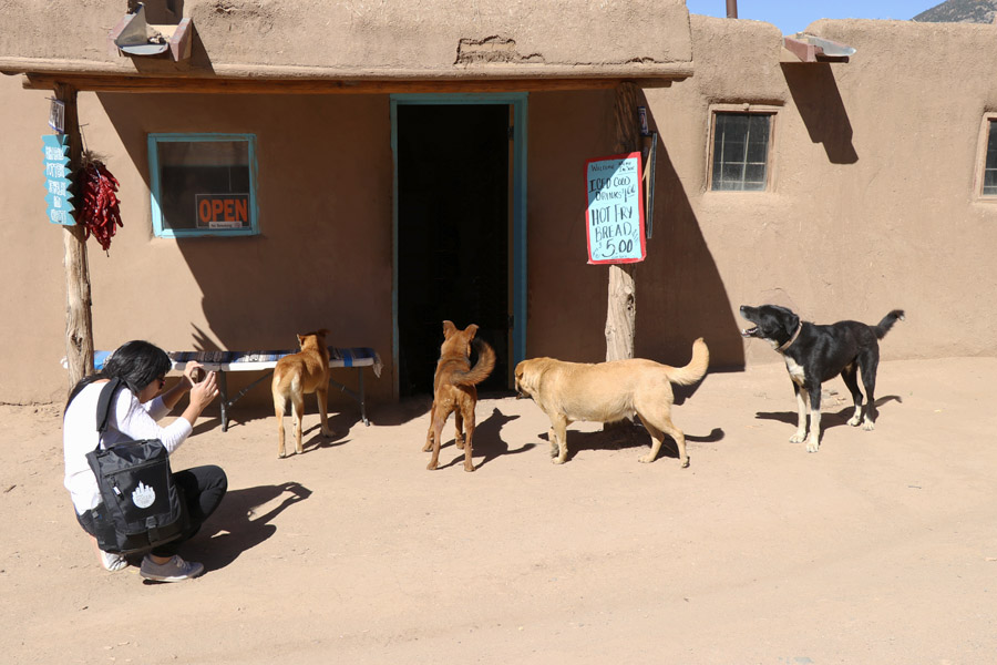 Taos Pueblo New Mexico Road Trip Travel Tips Dogs