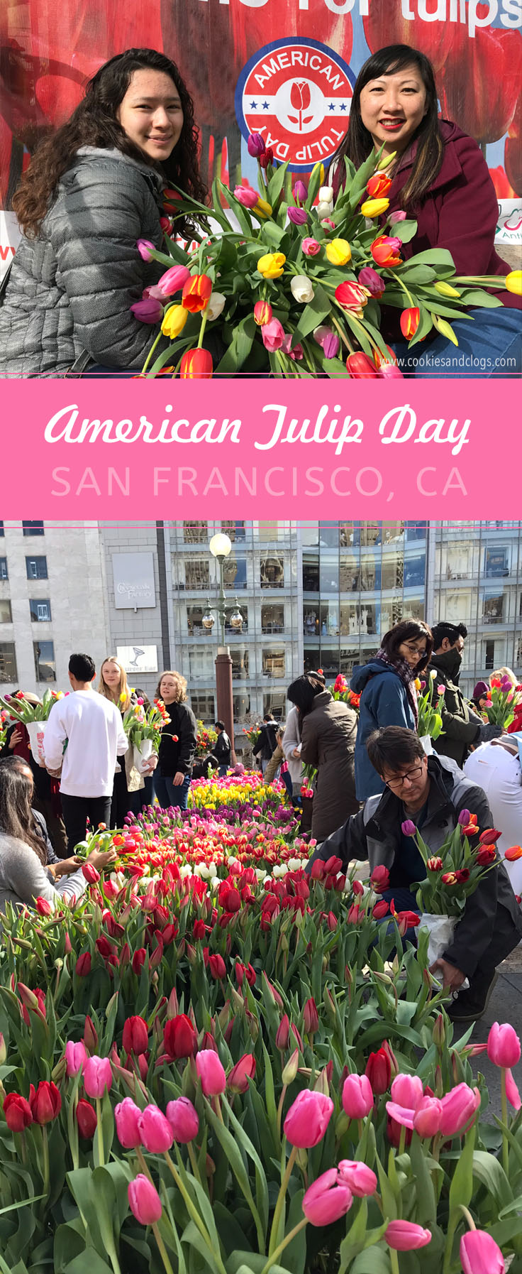 2018 American Tulip Day in San Francisco California at Union Square / Tulpendag San Francisco